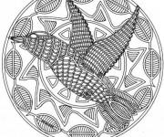 Coloriage et dessins gratuit Mandala Colibris adulte à imprimer