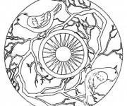 Coloriage et dessins gratuit Mandala Colibris et Soleil à imprimer