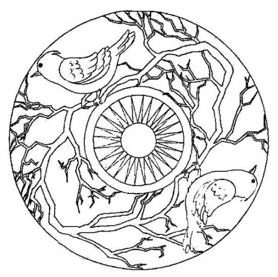 Coloriage et dessins gratuits Mandala Colibris et Soleil à imprimer