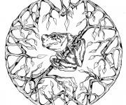 Coloriage Mandala Grenouille vectoriel