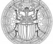 Coloriage et dessins gratuit Mandala Insecte à imprimer
