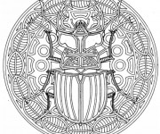 Coloriage Mandala Insecte