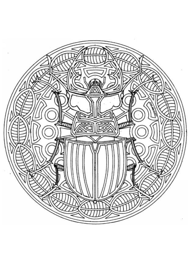 Coloriage et dessins gratuits Mandala Insecte à imprimer