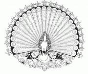 Coloriage et dessins gratuit Mandala Paon couleur à imprimer