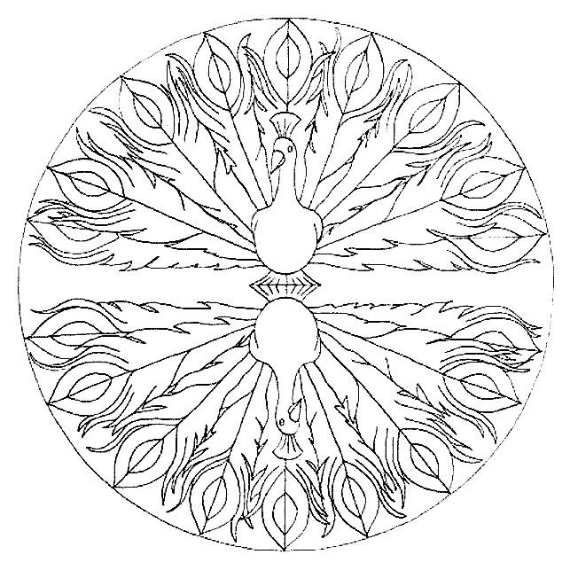 Coloriage et dessins gratuits Mandala Paon stylisé$ à imprimer