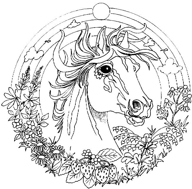 Coloriage cheval mandala magnifique dessin gratuit imprimer - Dessin de cheval magnifique ...