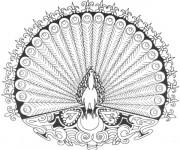 Coloriage et dessins gratuit Mandala Paon Difficile à imprimer