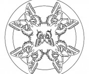 Coloriage Mandala Papillon Facile