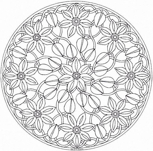 Coloriage Mandala Nature.Coloriage Mandala Fleurs Et Nature Dessin Gratuit A Imprimer
