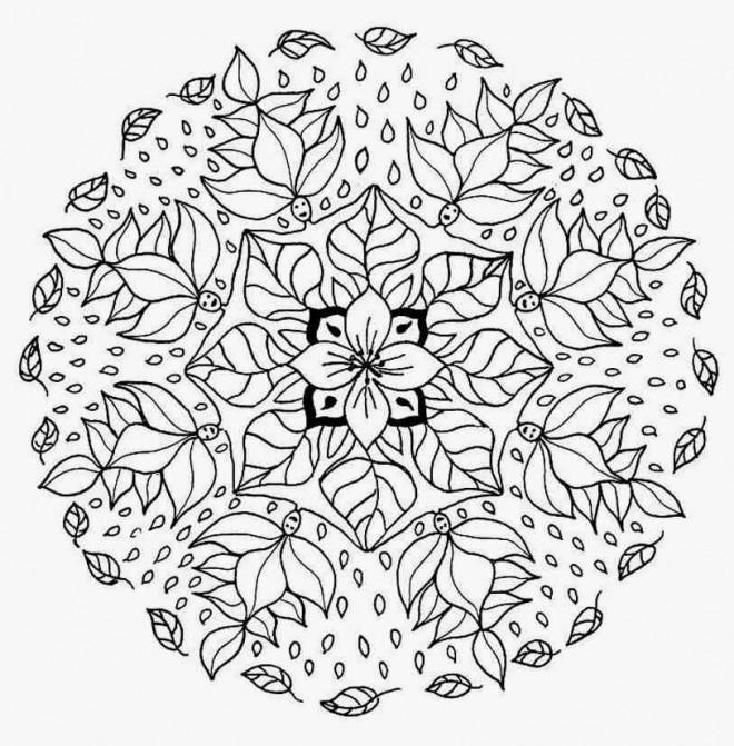 Coloriage Mandala Fleurs En Hiver Dessin Gratuit à Imprimer