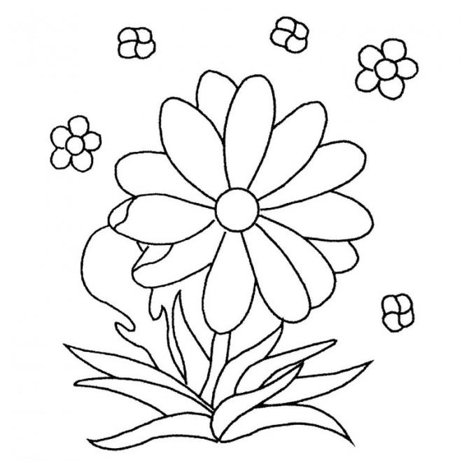 Coloriage et dessins gratuits Des Fleurs Maternelle à imprimer