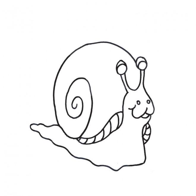 Coloriage et dessins gratuits Escargot Maternelle à imprimer