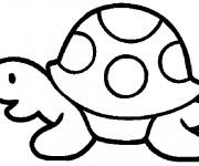 Coloriage et dessins gratuit Tortue Maternelle vectoriel à imprimer