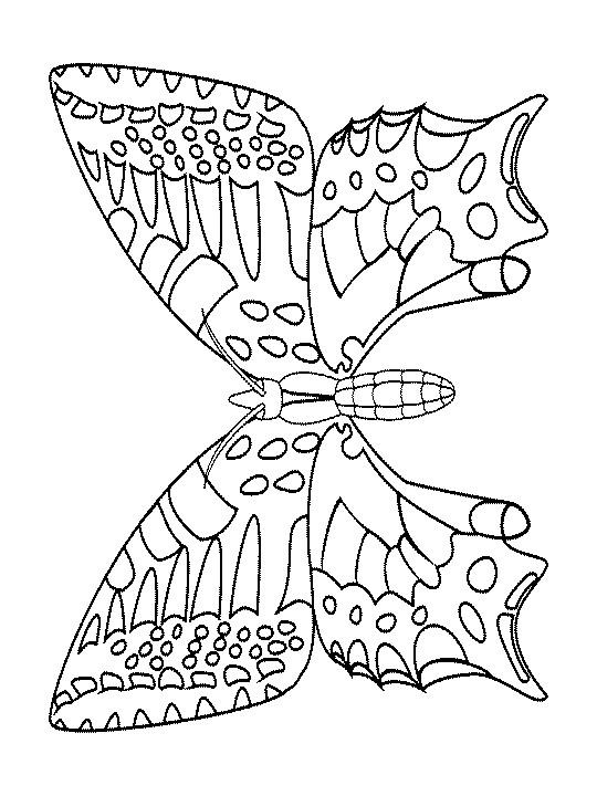 Coloriage et dessins gratuits Papillon Adulte couleur à imprimer
