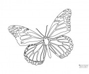 Coloriage dessin  Papillon Difficile 8