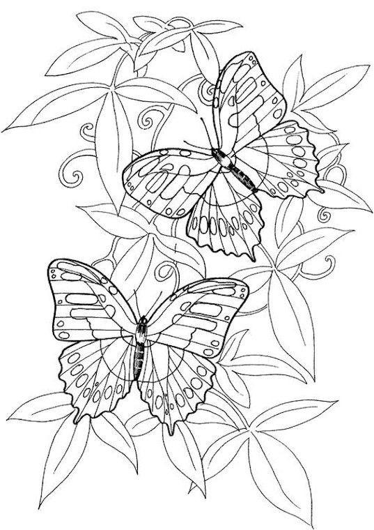 Coloriage et dessins gratuits Papillon Difficile à décorer à imprimer