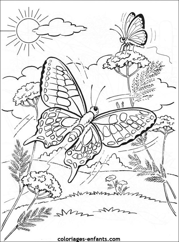 Coloriage papillon difficile dans la nature dessin gratuit imprimer - Coloriage fleur tres jolie ...