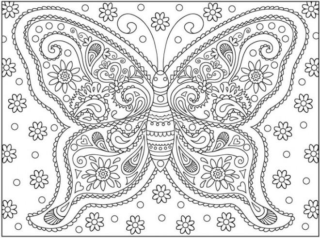 Coloriage papillon difficile destressant dessin gratuit - Modele de papillon a imprimer ...