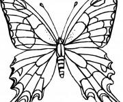 Coloriage Papillon Difficile sur Ordinateur