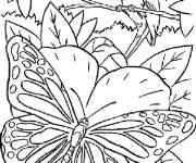 Coloriage Papillon Magique dans La Nature