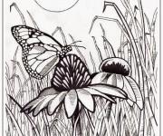 Coloriage Papillon sur Fleur Pour Adulte