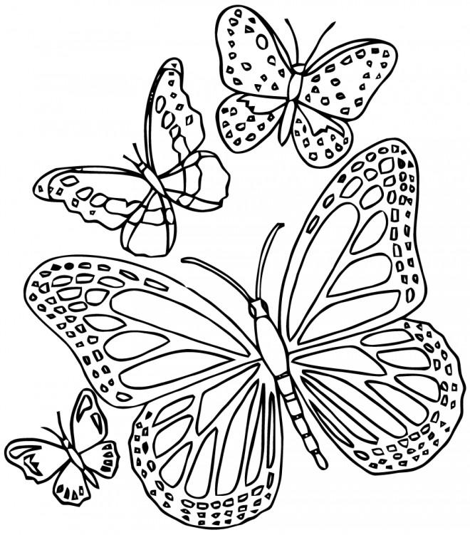 Coloriage paysage de papillon en ligne dessin gratuit imprimer - Dessin papillon a decouper ...