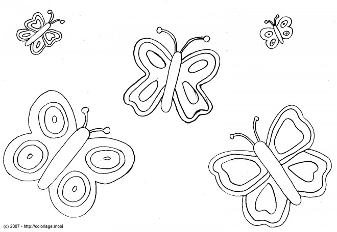 Coloriage des papillons couleur dessin gratuit imprimer - Dessin papillon a decouper ...