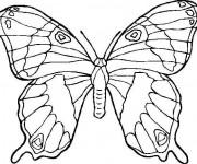 Coloriage papillon maternelle gratuit imprimer - Dessin papillon a decouper ...