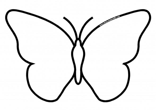 Coloriage Papillon Facile Dessin Gratuit à Imprimer