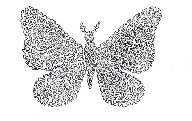 Coloriage papillon maternelle difficile dessin gratuit imprimer - Coloriage de papillon a imprimer gratuit ...