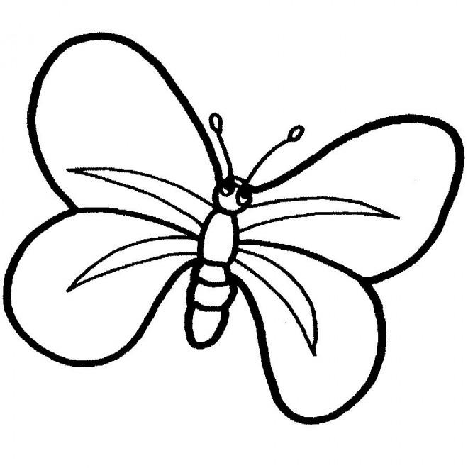 Coloriage Papillon Maternelle en ligne dessin gratuit à ...