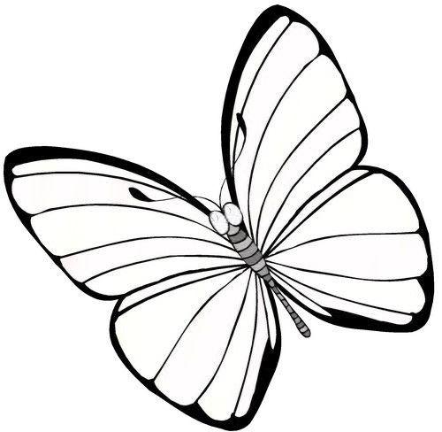 Coloriage et dessins gratuits Papillon Maternelle formidable à imprimer