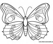 Coloriage et dessins gratuit Papillon Maternelle magnifique à imprimer