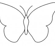Coloriage Papillon simple