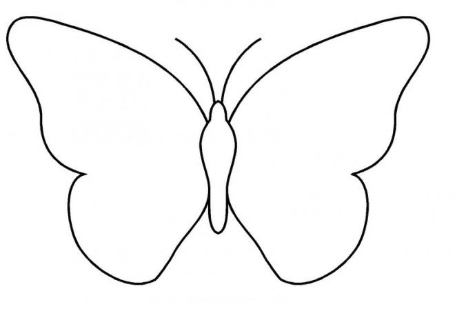 Coloriage papillon simple dessin gratuit imprimer - Coloriage papillon simple ...