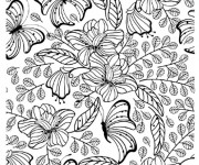 Coloriage Adulte Papillon vecteur