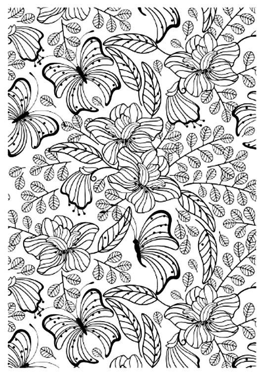 Coloriage et dessins gratuits Adulte Papillon vecteur à imprimer