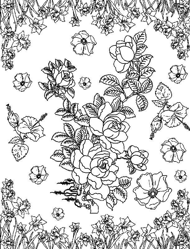 Coloriage et dessins gratuits Adulte Roses en l'air à imprimer