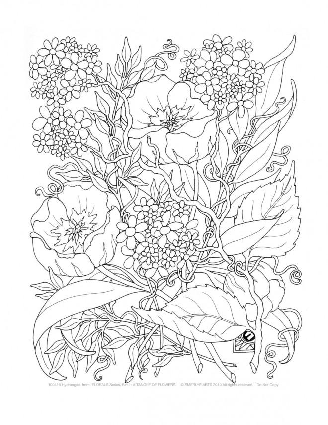 Coloriage et dessins gratuits Jardin Fleuri Pour Adultes à imprimer