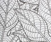 Coloriage et dessins gratuit Anti-Stress 56 à imprimer