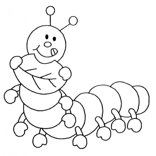 Coloriage et dessins gratuits Insecte Rigolo à imprimer