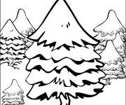 Coloriage Sapin dans la Forêt