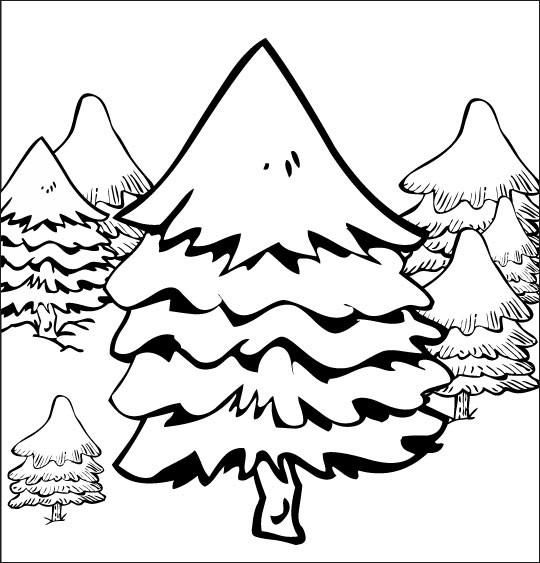 Coloriage et dessins gratuits Sapin dans la Forêt à imprimer