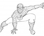 Coloriage Spiderman au crayon