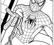 Coloriage Spiderman en couleur