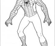 Coloriage spiderman facile gratuit imprimer - Coloriage petit spiderman ...