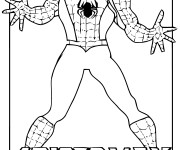 Coloriage Spiderman Le Héro fort