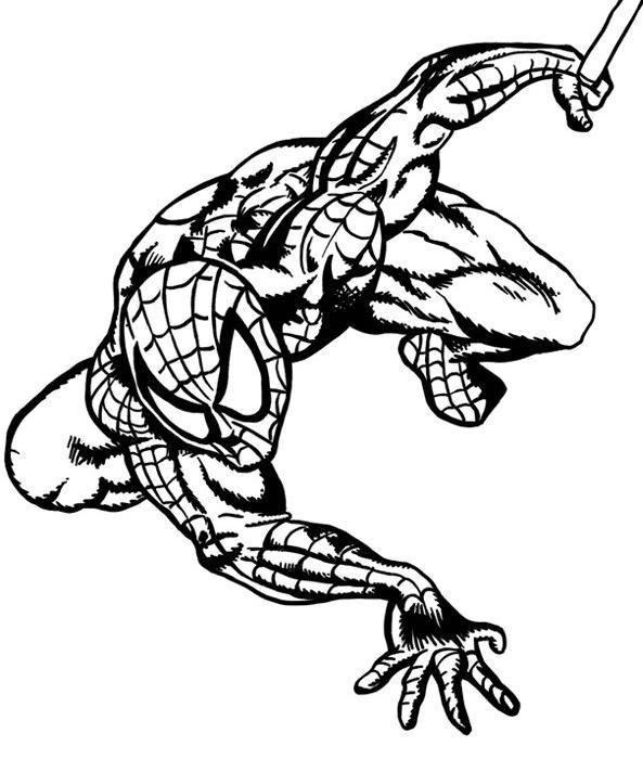 Coloriage spiderman le super h ro dessin gratuit imprimer - Coloriage spiderman portrait ...
