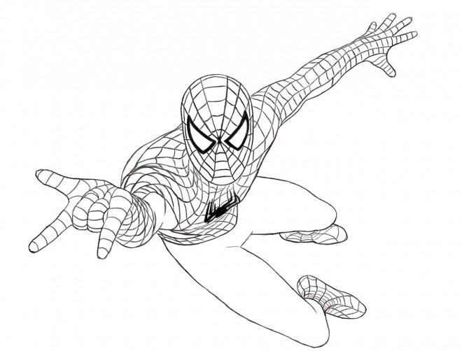 Coloriage Spiderman Simple Couleur Dessin Gratuit à Imprimer