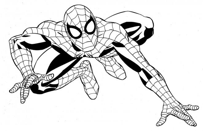 Coloriage Super Héros Marvel Spider Man Dessin Gratuit à Imprimer